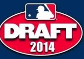 Examination Of 2014 Free Agent Draft Revealing