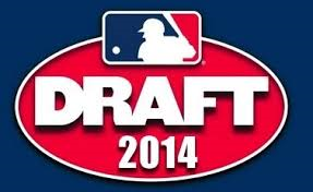 2014 MLB Draft Logo